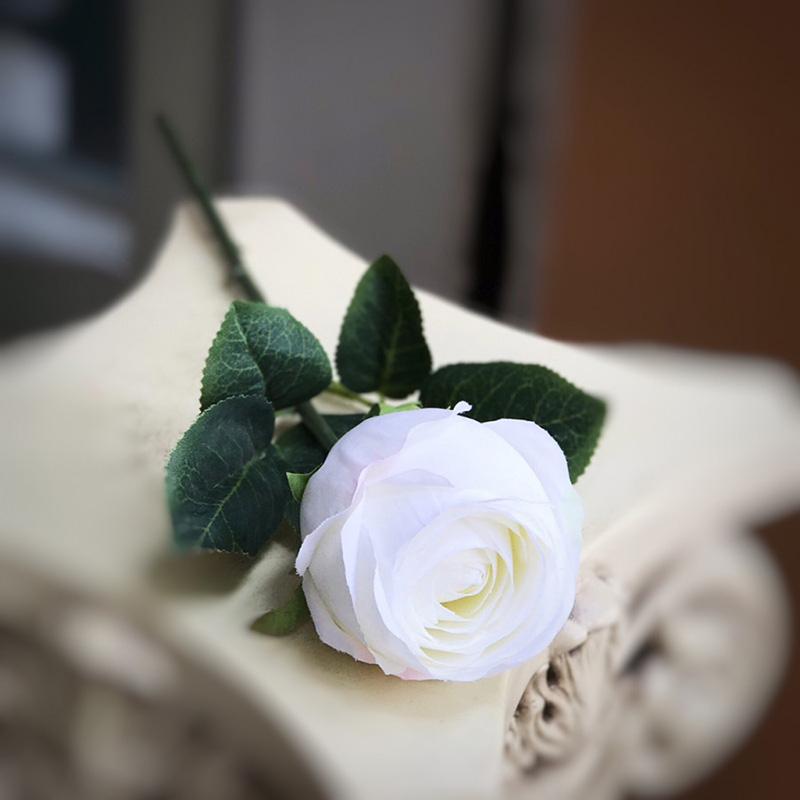 Hoa hồng trắng còn có tên gọi khác là hoa hồng lai hoặc hoa nhược tâm