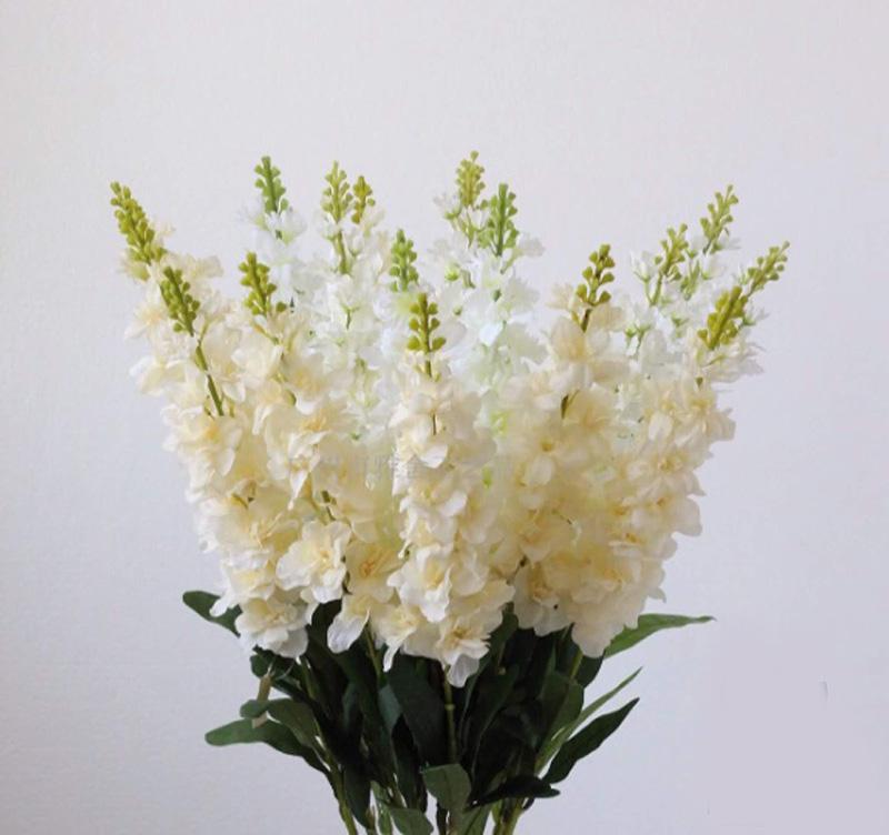 Hoa phi yến là loài hoa của hạnh phúc