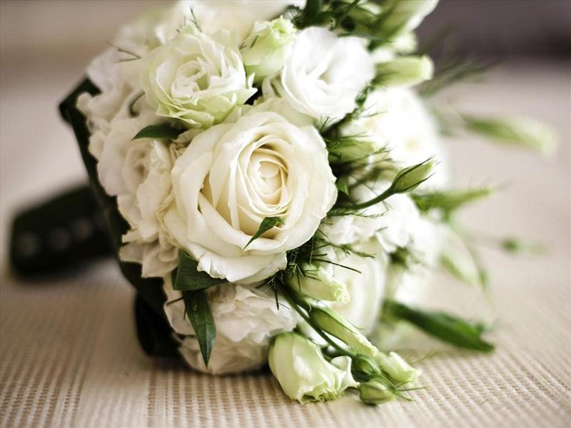 Hoa hồng trắng thể hiện ngây thơ thuần khiết trong tình yêu