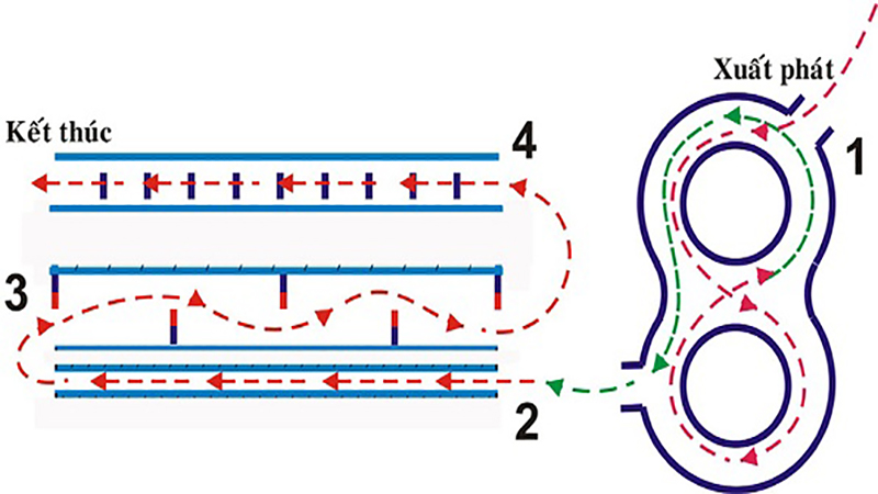 Cấu trúc phần thi thực hành bằng A1