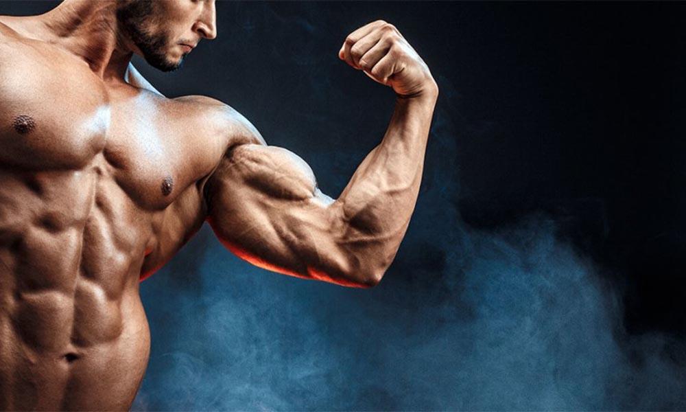 Phát triển sức mạnh cơ bắp