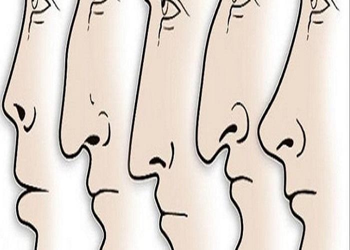 Đầu mũi dài